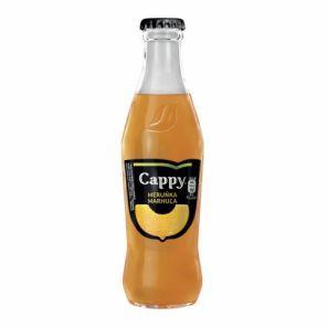 CAPPY 0,25L meruňka